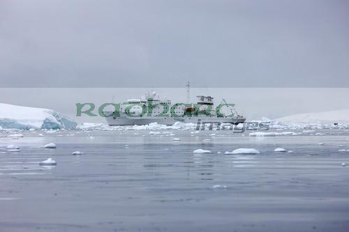 akademik sergey vavilov ship in antarctica