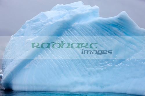 small blue ice iceberg in Antarctica