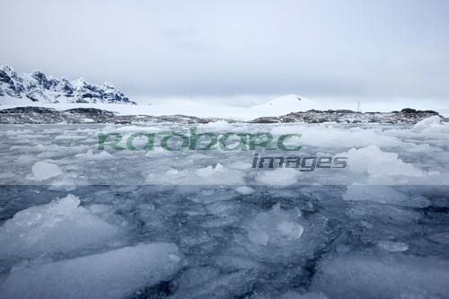 Brash ice forming around Port Lockroy