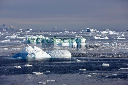 icebergs in the french passage Antarctica