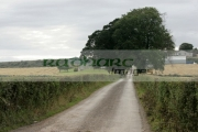 lone-country-lane-leading-to-large-tree-farmhouse-outside-newtownards-county-down-northern-ireland