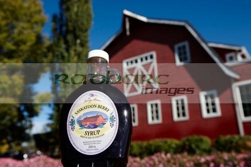 saskatoon berry syrup outside the berry barn saskatoon Saskatchewan Canada