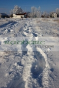 two-sets-human-footprints-in-deep-heavy-snow-across-field-leading-to-remote-rural-community-in-Forget-Saskatchewan-Canada
