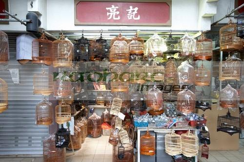 Hong Kong bird garden market