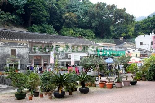 traditional pai tau village sha tin hong kong