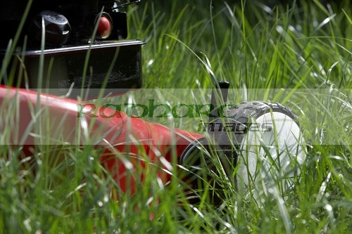 Lawnmower in long grass