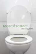 toilet-bowl-with-lid-up-seat-down