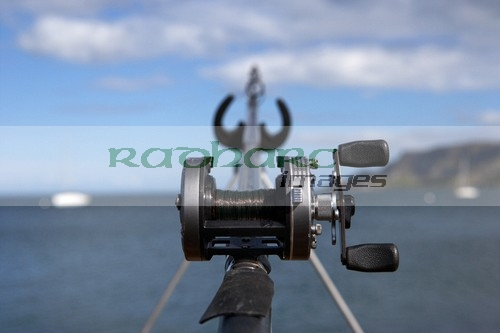 rod and multiplier reel sea fishing