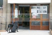 dogs-tied-up-outside-polling-station-in-northern-ireland