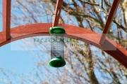 empty-bird-feeder-hanging-from-garden-structure-Newtownabbey-Northern-Ireland-UK