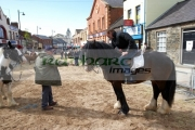 horse-trading-during-ballyclare-may-fair-county-antrim-northern-ireland