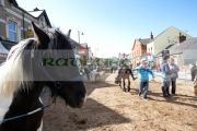 horse-trading-in-main-street-during-the-ballyclare-may-fair-county-antrim-northern-ireland