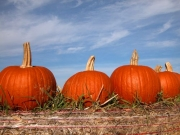 pumpkins-on-top-hay-bale