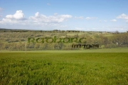 green-irish-countryside-farmland-in-County-Cavan-Republic-Ireland