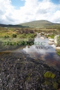 small-stream-flowing-through-area-known-as-st-kevins-road-in-the-wicklow-mountains