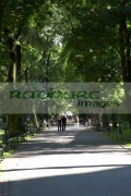 vertical-footpath-through-the-planty-public-parks-gardens-with-people-walking-on-them-in-Krakow