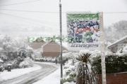Seasonal images