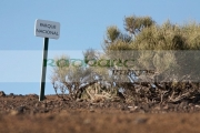 parque-nacional-national-park-sign-el-teide-Tenerife-Canary-Islands-Spain