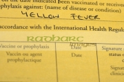international-certificate-vaccination-or-prophylaxis-document-for-yellow-fever-vaccine