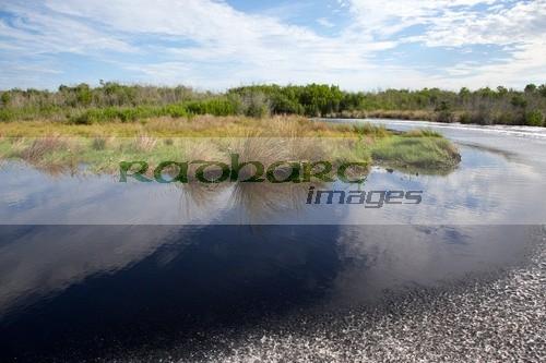 speeding through turn in open grasslands florida